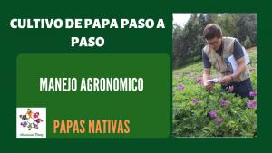 Manejo Agronomico de papas nativas – UC 5 – E 1
