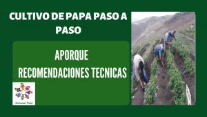 Aporque cultivo de papa – UC 3 – E 1