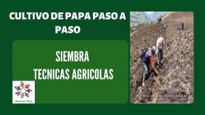 Siembra en el cultivo de  papa – UC 2 – E 2