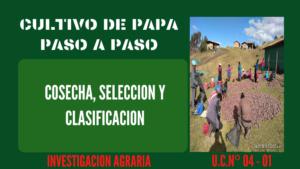 Cosecha, Selección y Clasificación – UC 4 – E 1