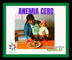 Anemia Cero 馃崕