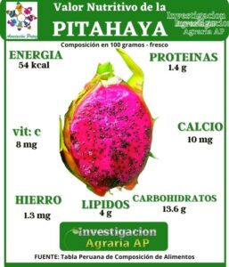 Super Alimentos: PITAHAYA