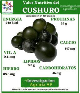 Super alimentos: CUSHURO